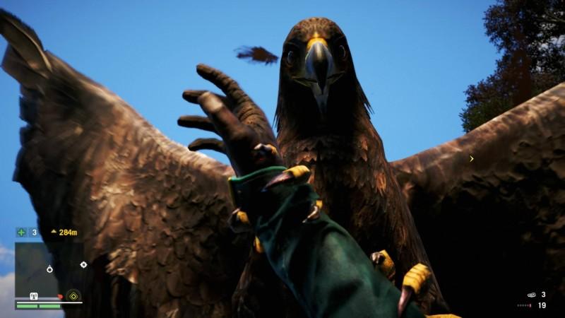 FarCry 4 eagle!