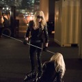 arrow-image-caity-lotz-canaries