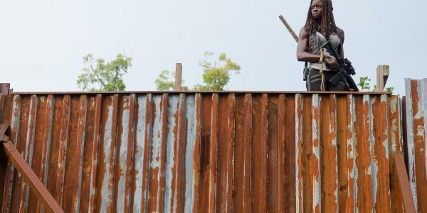 Danai Gurira as Michonne - The Walking Dead _ Season 6, Episode 10 - Photo Credit: Gene Page/AMC