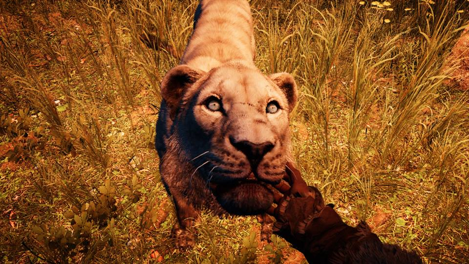 Far Cry Primal tiger tame