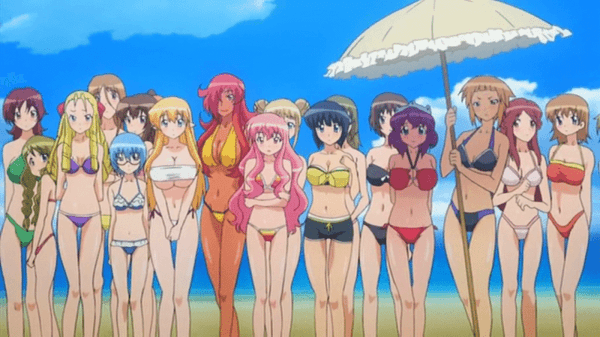 The Familiar of Zero swimsuits