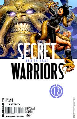 secret_warriors_vol_1_12